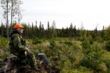 Pressmeddelande: måndagen den 3 september startar älgjakten i norra Dalarna