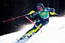 45 åkare i alpina- och skicrosslandslagets träningsgrupper 2020/2021