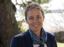 Sveriges Träbyggnadskansli på COP22: Ge klimatarbetet en kickstart med modernt träbyggande