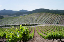 Kommentar till Kalla Faktas granskning i TV4 av vinindustrin