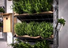 VPLANT nominerad till årets trädgårdsprodukt