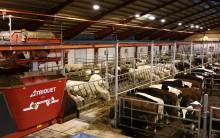Trioliets automatiserade utfodringssystem ökar i Sverige