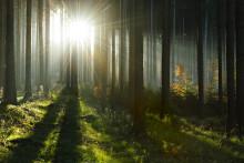 SEKAB ett av Sveriges mest hållbara företag