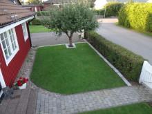 Svenska folkets gräsmattor...
