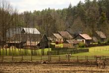 Byar och gamla gårdsmiljöer gynnar hotade fåglar