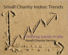 Increase in demand, rising workloads and static income has small charities fearing closure, says the 'Shifting Sands of the Small Charity Sector' research report from the FSI