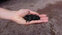 Biokull av organisk avfall