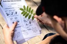 Kunskap om naturens arter öppnar för miljöengagemang