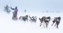 Lars Monsen inntar Trysil med Femundsløpet