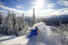 Neues aus Ski-Norwegen