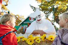 Børnehavebørn gjorde Pjerrots hus efterårsklart til  ny sæson