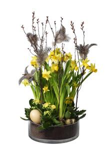 Solgula blommor lyser upp påsken