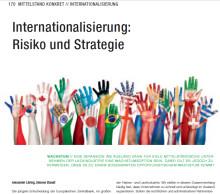 Internationalisierung in der Farben- und Lackindustrie: Risiko und Strategie