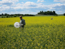 Projekt om bin och neonikotinoider levererar nya resultat