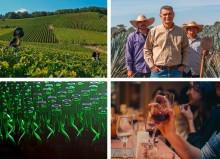 Pernod Ricard stellt die neue Strategie für Nachhaltigkeit und Verantwortung vor