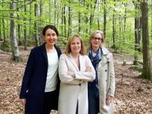 Mariette Lindstein återvänder till sekten på Dimön med ny serie – skriver tvåboksavtal med HarperCollins Nordic