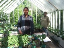 Trädgård, natur och vila på Bok och Bibliotek