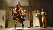 Akrobatik, dockteater, dans och drama möts i nycirkusföreställningen ROOTS