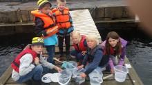 Pressinbjudan, var med när miljöminister Karolina Skog besöker Havets Hus