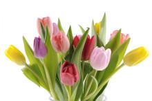"""Välkomna till """"Lilla vårbasaren"""" hos Blomsterfonden den 6 april"""