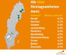 Norsjö kommun har Sveriges snabbast växande företagsamhet