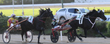 Fransman och svensk nya hästar i Elitloppet Benders
