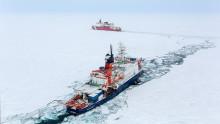 Tinande tundra ger ökad näring i Arktiska havet