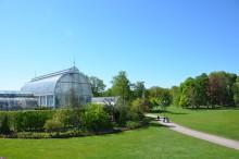 Trädgårdsföreningen blir testbädd för framtidens parker
