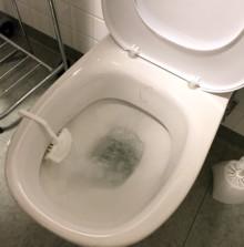 Akademiska först med enzymrening av läkemedelsrester i toaletter