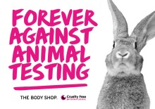 EU-parlamentet stöttar globalt förbud mot djurförsök inom kosmetik!