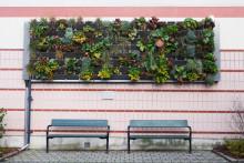 Nationell konferens om ökad biologisk mångfald i staden