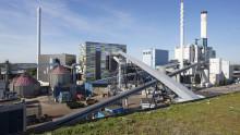 MDH-forskning: Biomassa kan ge alternativa motorbränslen till konkurrenskraftigt pris
