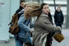 Scanbox ungdomsfilm Hacker vinner Bronshästen på Stockholms filmfestival Junior 2019