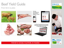 New guide from EBLEX helps supply chain yield additional value from beef carcase