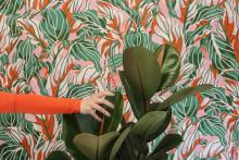 Blommigt, färgglatt och stort – nya och trendiga tapetmotiv från Iwa Herdensjö