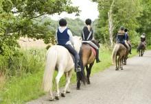 Prestigefylld ponnytävling hålls på Ale-Jennylunds Ridklubb, Ale i 28-30 juni