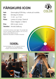 Färgkurs ICON
