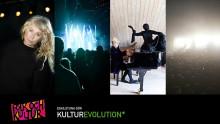 Maxa Folk och Kultur i Eskilstuna utan deltagarpass
