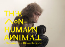 The Non-Human Animal - Negotiating Bio-relations - exhibition at Uppsala Art Museum