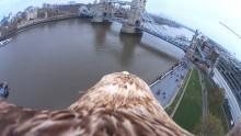 Die Action Cam Mini von Sony zeigt London aus der Vogelperspektive