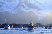 Rekordhøy torskeeksport