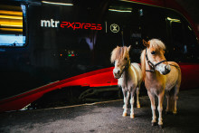 "MTR Express arrangerar ""Hästtåg"" till Sweden International Horse Show"