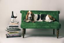 Røff nyhet fra Bulgaria - Rough Day Pinot Noir