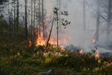 Internationell träff om förändrat klimat i Härnösand och Sundsvall