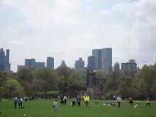 Seminarieinbjudan: Vad kan vi lära av New York?