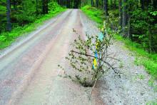 Nytt hjälpmedel för skogsbilvägar
