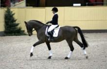 Över 1000 unga förväntas till Flyinge på Ungdomsdag i hästen tecken