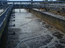 Så många procent finns inte, sa Pomperipossa om fosforn till Östersjön