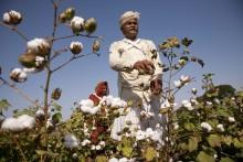 IKEA sælger udelukkende bæredygtig produceret bomuld