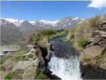 Sierra Nevada - Janet Rhodes